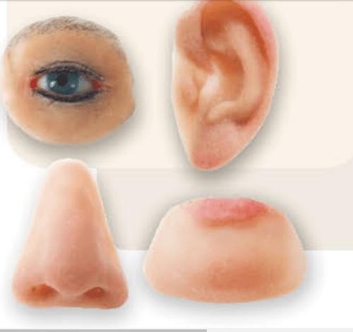3D Baskı Yüz Protezi Baskı ve İmalat Aşaması